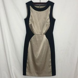 The Limited Gold & Black Dress